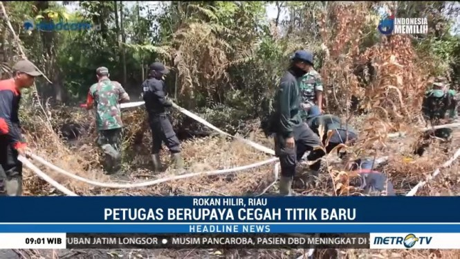 4 Hektare Lahan Gambut di Rokan Hilir Terbakar