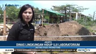 Gundukan Tanah Diduga Limbah Berbahaya di Marunda