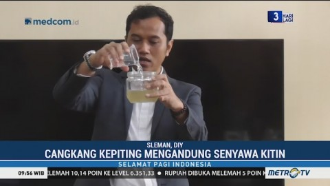 Dosen UGM Ciptakan Formula Anti Hama dari Cangkang Kepiting