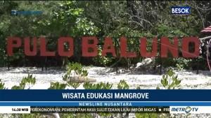 Wisata Edukasi Mangrove