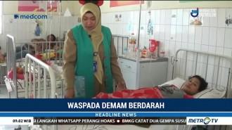 Penderita DBD di Lamongan Meningkat