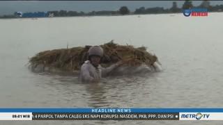 Ratusan Hektare Sawah di Pati Terendam Banjir