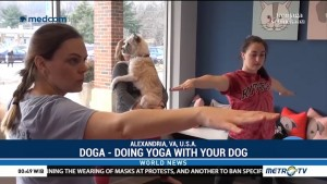 Doga - Doing Yoga With Your Dog