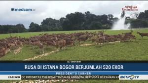 Merawat Taman dan Rusa Istana Bogor