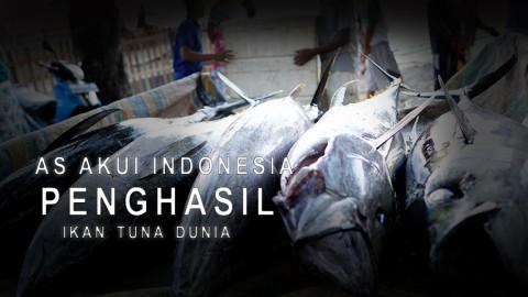 AS Akui Indonesia Penghasil Ikan Tuna Dunia