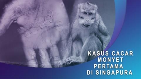 Kasus Cacar Monyet Pertama di Singapura