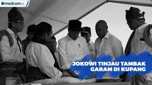 Kunjungi NTT, Jokowi Tinjau Tambak Garam