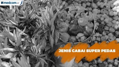 5 Jenis Cabai Pedas di Beberapa Daerah di Indonesia