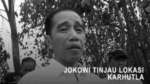 Jokowi Tinjau Langsung Lokasi Karhutla