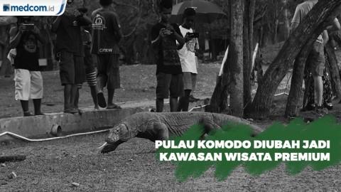 Taman Nasional Komodo akan Dijadikan sebagai Kawasan Wisata Premium