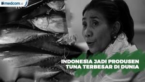 Ditangan Menteri Susi, Indonesia Jadi Produsen Tuna Terbesar di Dunia