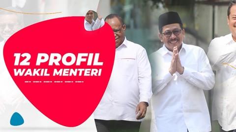 Profil Wakil Menteri Indonesia