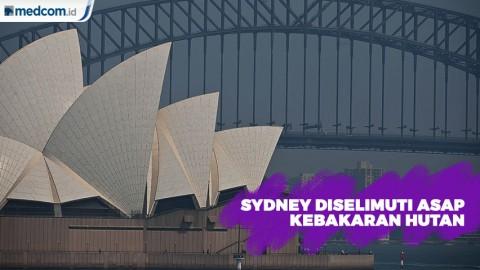 Sydney Diselimuti Asap Kebakaran Hutan