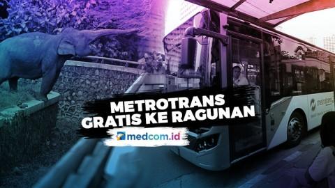 Bus Metrotrans Gratis Ke Rute Ragunan