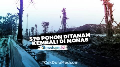 Sebanyak 570 Pohon Ditanam Kembali di Kawasan Monas