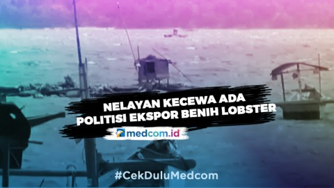 Nelayan Kecewa Ada Politisi Dapat Jatah Ekspor Benih Lobster