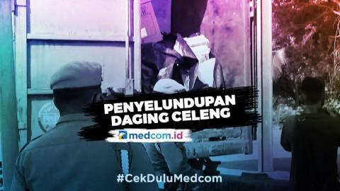 Polisi Gagalkan Penyelundupan 1,1 Ton Daging Celeng