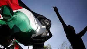 Menanti Gerak OKI Memperjuangkan Palestina