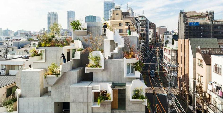 Rumah Pohon di Kampung  Jepang