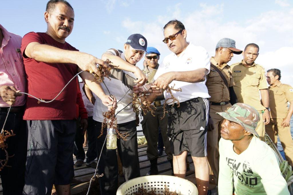 Kemendes PDTT Fasilitasi Budi Daya Rumput Laut