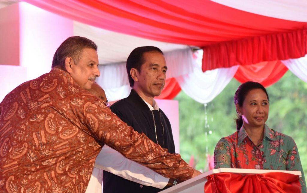 Menyasar Jokowi Lewat Rini-Dirut PLN