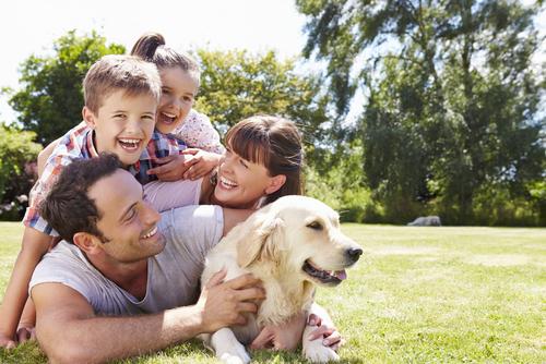 Lima Manfaat Memelihara Anjing bagi Anak