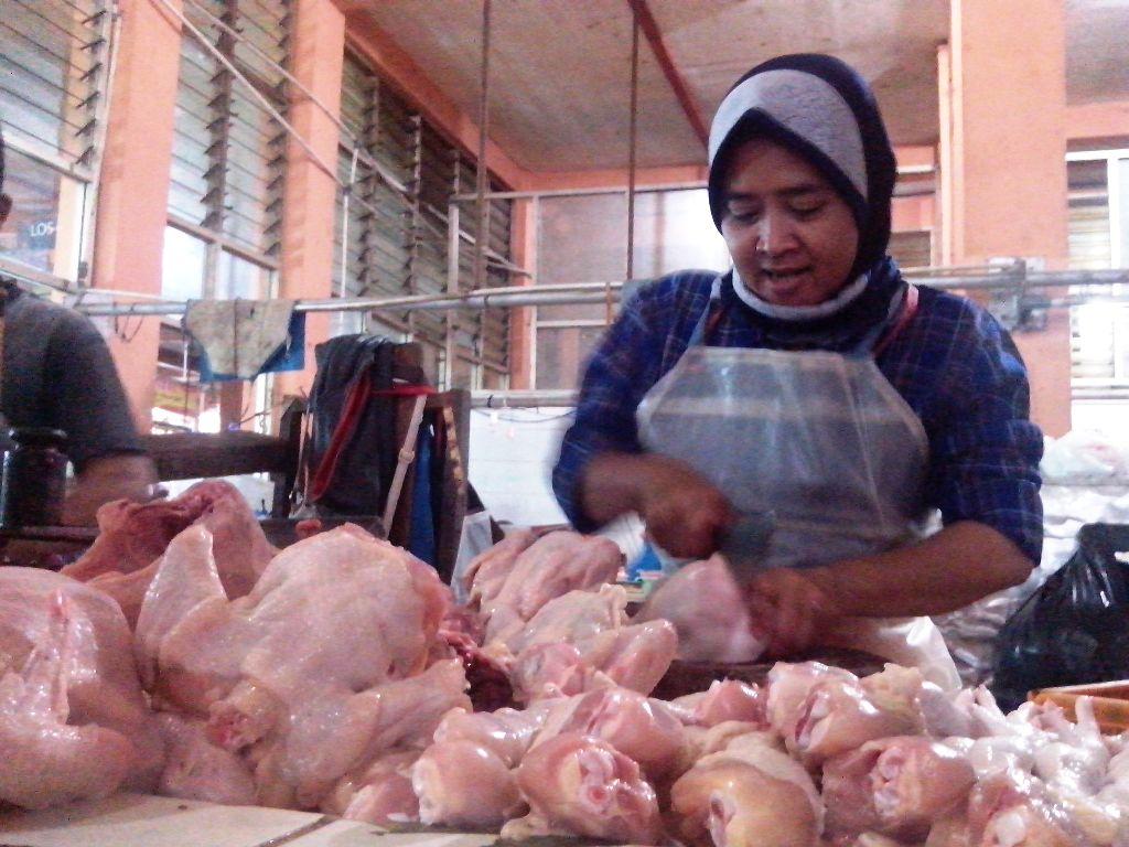 Charoen Pokphand Siap Bantu Tekan Harga Daging Ayam
