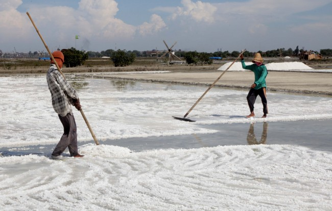 PT Garam dan BPPT Siap Kelola Lahan 225 Ha Garam