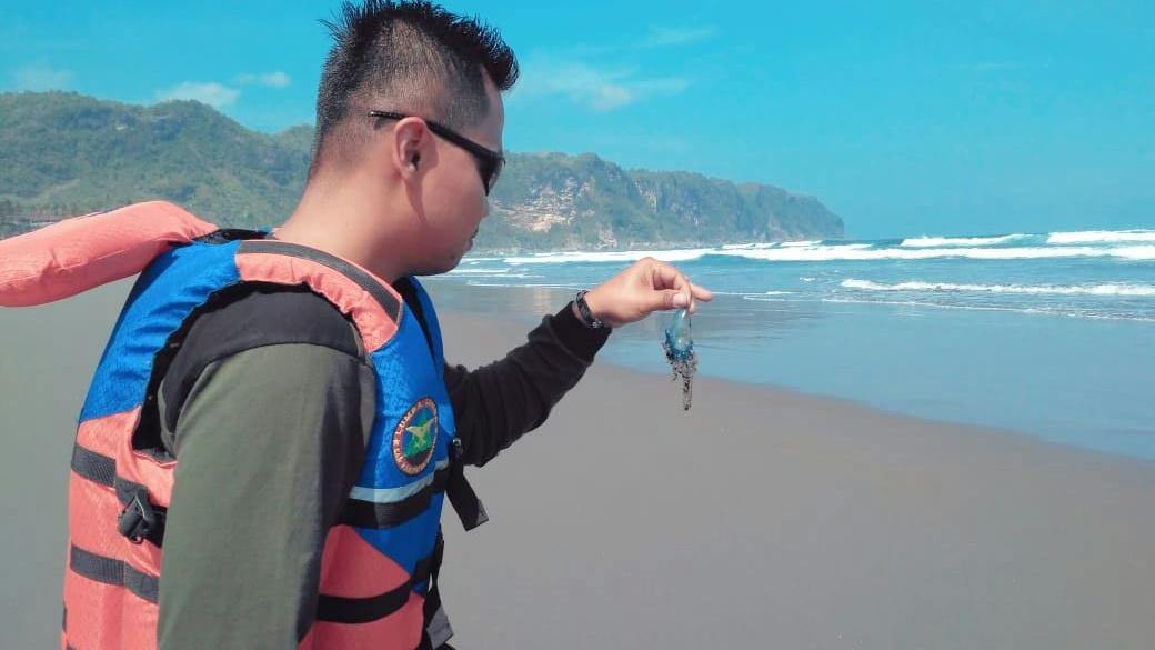 Waspada Serangan Ubur-ubur di Pantai Bantul dan Gunungkidul