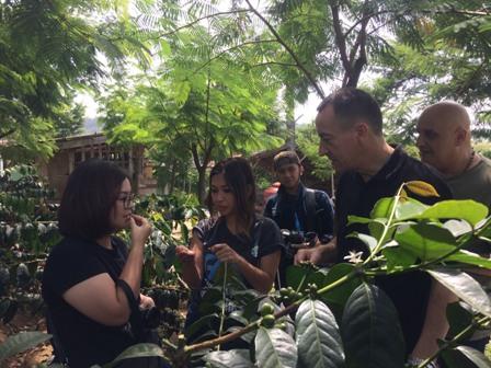 150 Ribu Bibit Kopi untuk Petani Sumatera