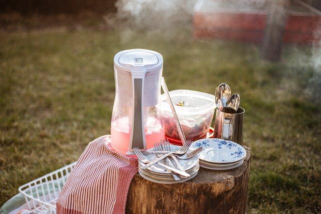 Tips agar Makanan Aman dari Serangga Saat Piknik