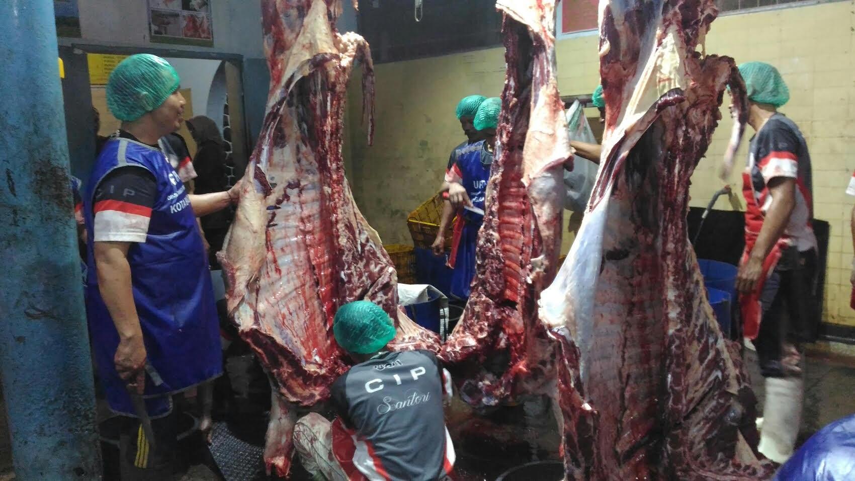 Stok Daging Sapi di Bandung Aman