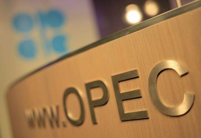 Kesepakatan OPEC tak Pengaruhi Proyek Migas Dalam Negeri