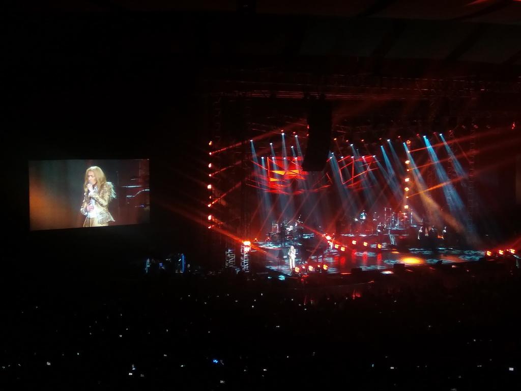 Konser di Indonesia, Celine Dion Mengharapkan Kedatangan Pink