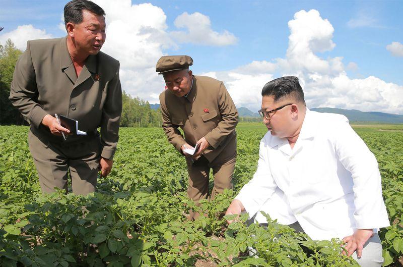 Kunjungi Pertanian Kentang, Kim Jong-un Abaikan Menlu AS