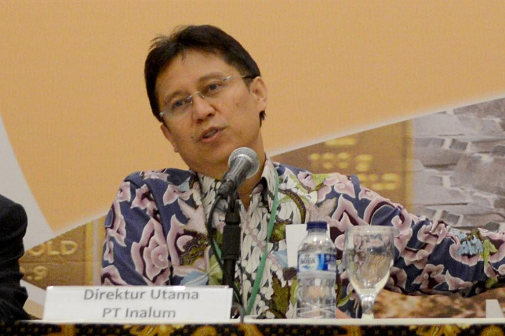 Pembentukan Perusahaan Patungan Inalum-Pemda Papua Masih Dibahas