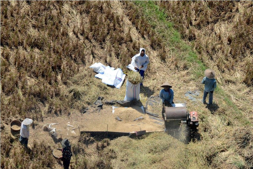 Dugaan Korupsi Pertanian di Daerah Harus Diusut