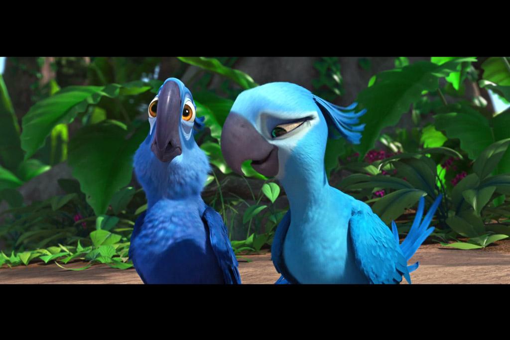 Spesies Burung di Film Animasi Rio Diyakini Punah