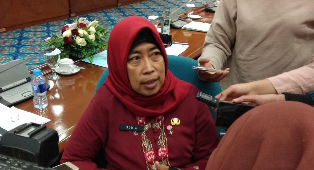 Naturalisasi Sungai di Jakarta belum Sentuh Kota Penyangga