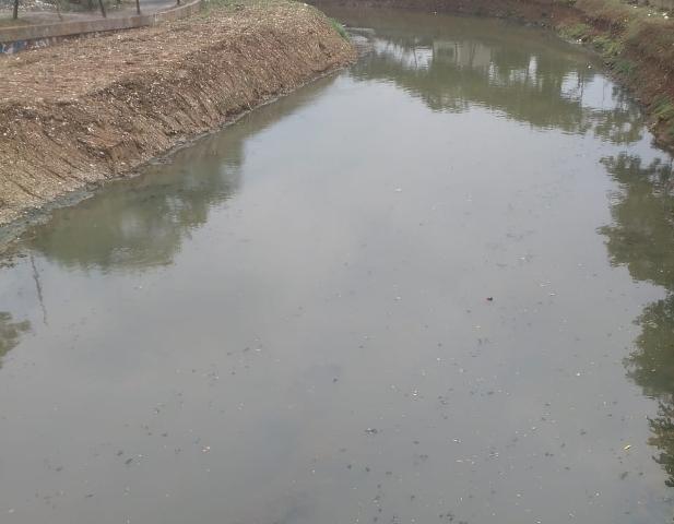 Lurah Pesanggrahan Yakin Banjir tak Lagi Mampir