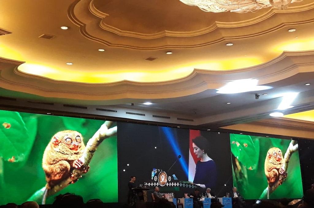 Indonesia Pemain Kunci di Kawasan Indo-Pasifik