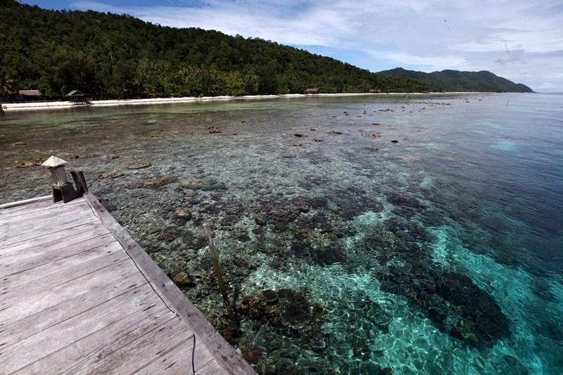 BUMN Prancis Berniat 'Setrum' Pulau Terpencil Indonesia