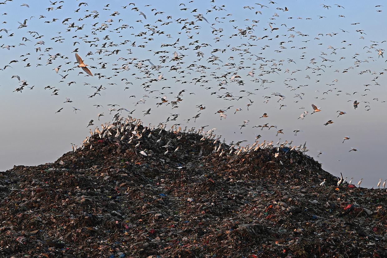 Sampah untuk Energi