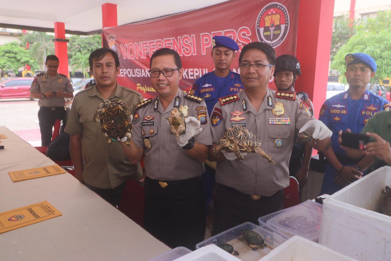 Polisi Gagalkan Penyelundupan Satwa Burung dan Kura-kura