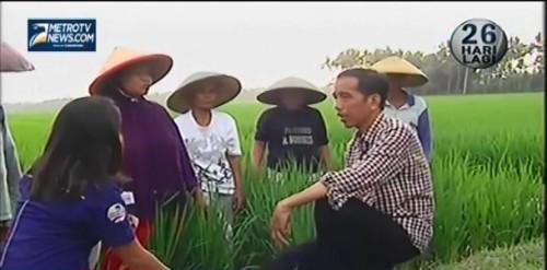 Petani Apresiasi Kinerja Jokowi-JK