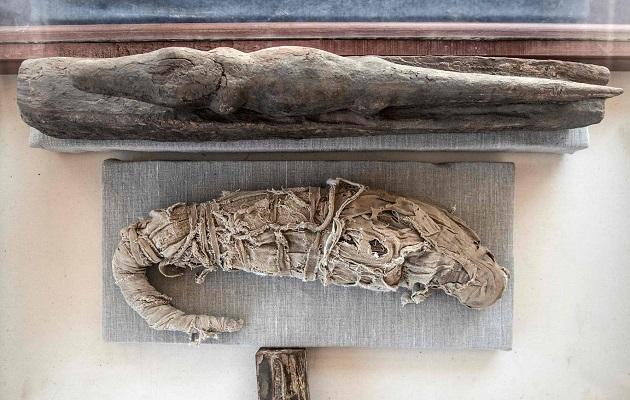 Patung Kumbang Besar Kuno Dipamerkan di Mesir