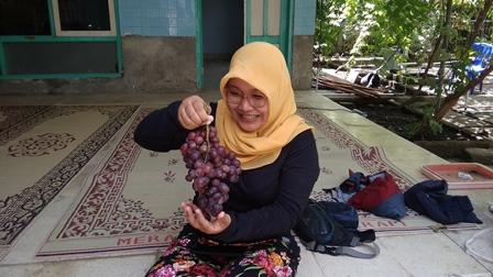Kisah Rio, Pembudi Daya Anggur dari Ukraina di Bantul