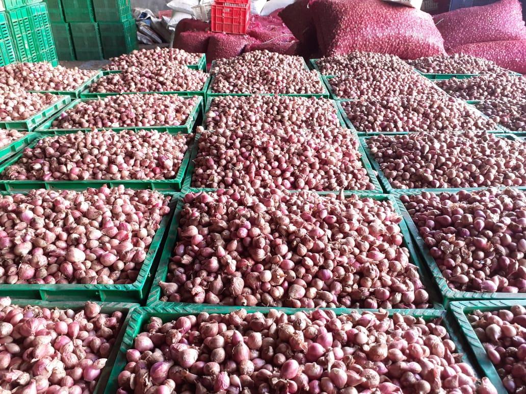 <i>Food Estate</i> Humbahas Panen, Petani: Kualitas Bawang Saya Bagus