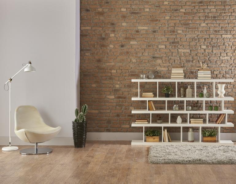 Tips Membangun Perpustakaan di Rumah