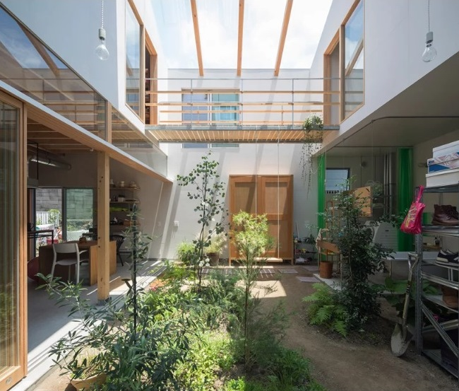 Tips Membangun Taman dalam Rumah di Lahan Terbatas